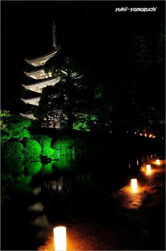 ゆらめき香山公園01.jpg