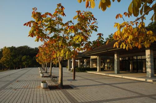 江汐公園 003.JPG