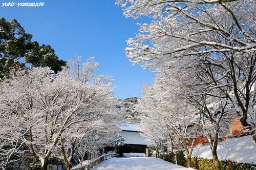 雪の両足寺02.jpg