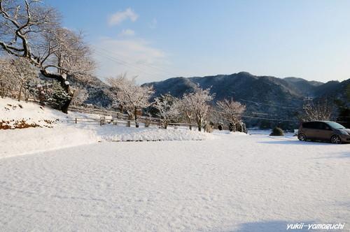 雪の両足寺06.jpg