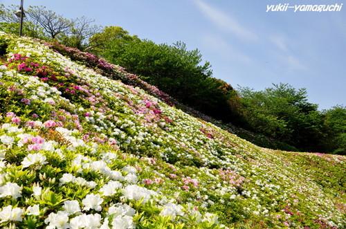 彦島南05.jpg