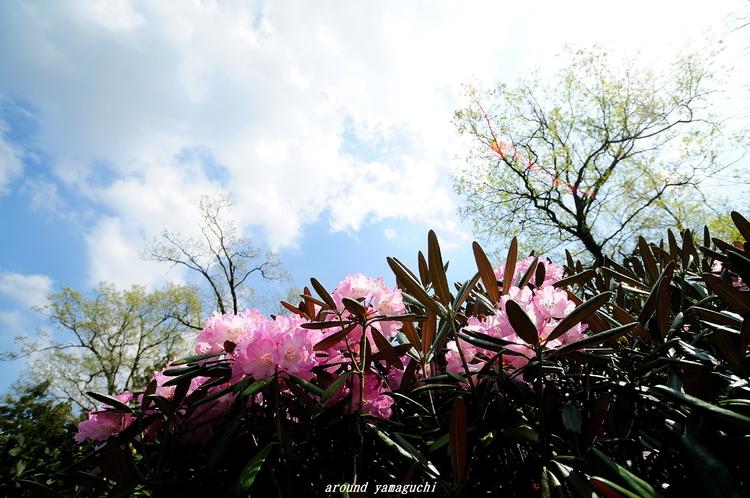 俵山09.jpg