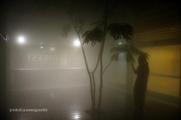 情報芸術センター夜の部03.jpg