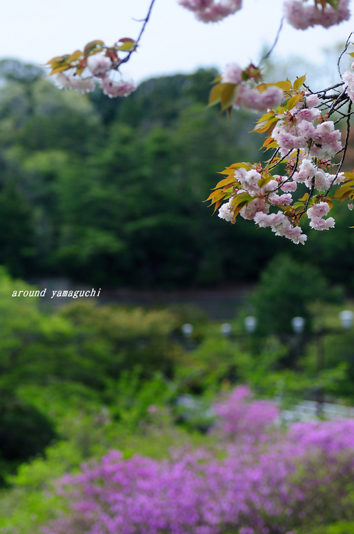 江汐公園06.jpg