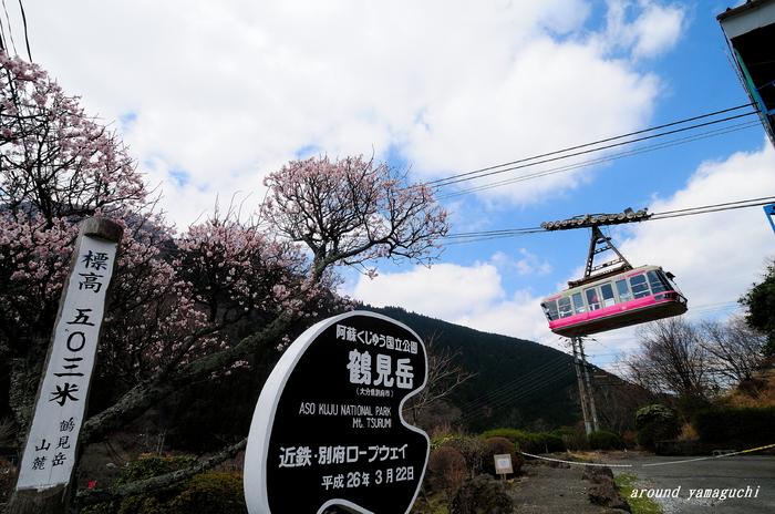 鶴見岳霧氷14.jpg