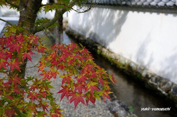 鹿野漢陽寺05.jpg