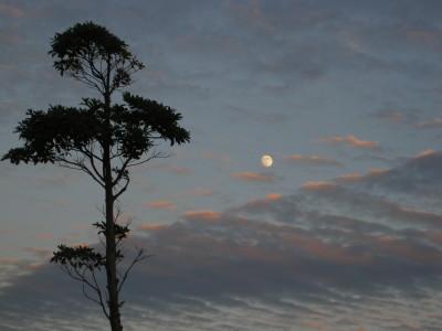 きららビーチの夕日 033.JPG