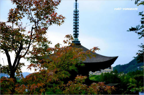 ゆらめき香山公園04.jpg