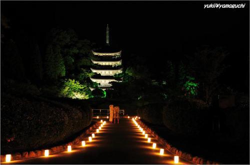 ゆらめき香山公園05.jpg