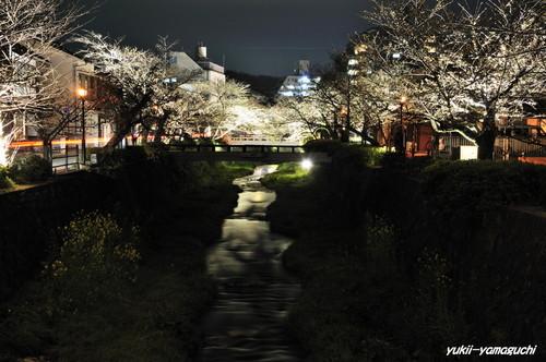 一の坂川01.jpg
