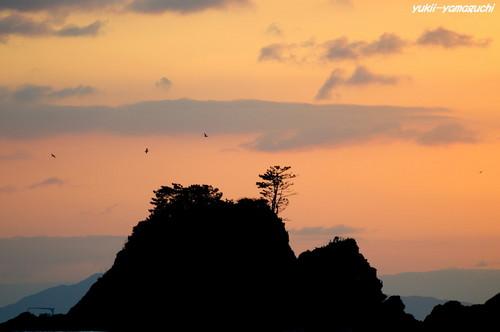 加茂島06.jpg
