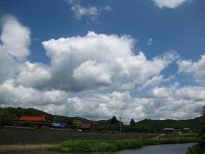 厚狭 (5).JPG