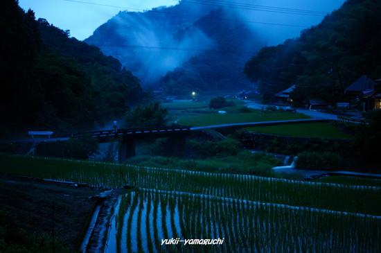 三谷ホタル062606.jpg