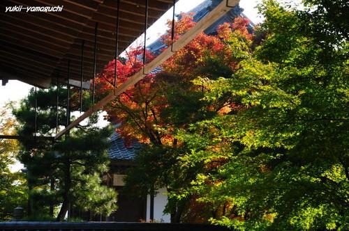 鹿野・漢陽寺05.jpg