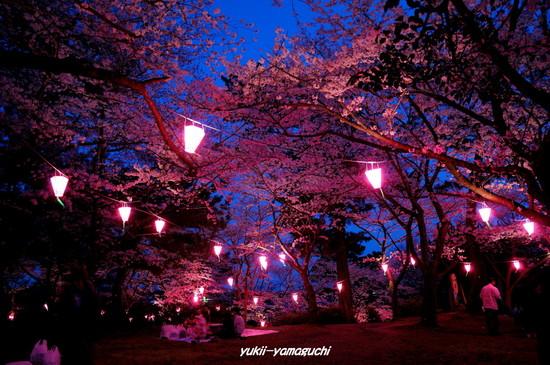 若山公園提灯02.jpg