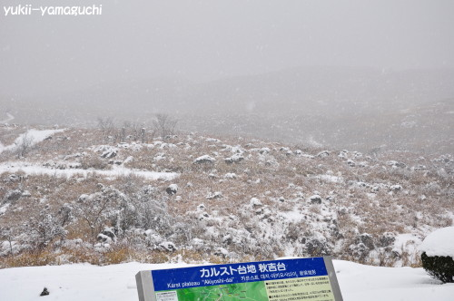 秋吉台雪007.jpg