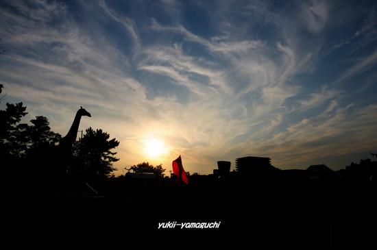 常盤公園夕景01.jpg