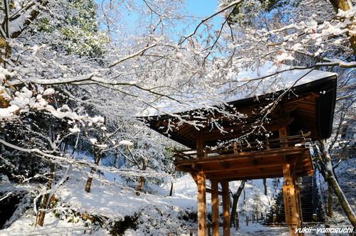雪の両足寺01.jpg