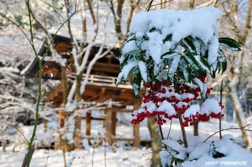 雪の両足寺05.jpg