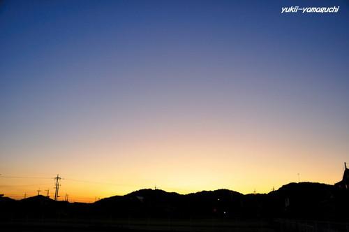 朝のグラデ 005.JPG