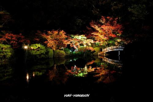 長府庭園灯りの祭典02.jpg