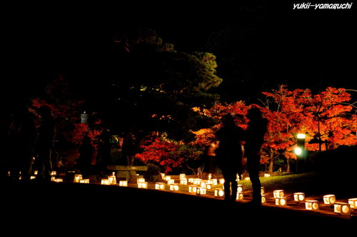 長府庭園灯りの祭典04.jpg