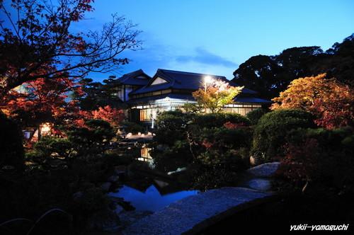 長府庭園灯りの祭典06.jpg