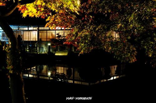 長府庭園灯りの祭典08.jpg