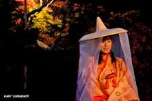 長府庭園灯りの祭典16.jpg