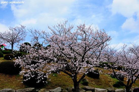 天神山公園08.jpg