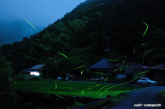 徳地三谷09.jpg
