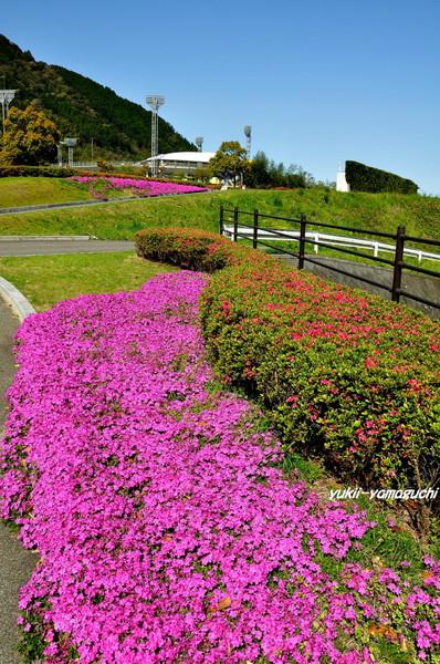 萩ウエルネスパーク01.jpg