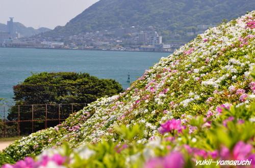 彦島南06.jpg