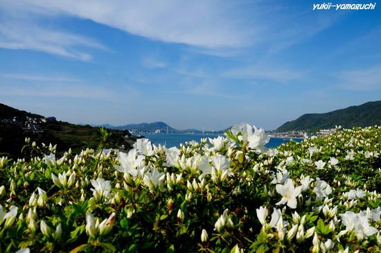 彦島南公園01.jpg