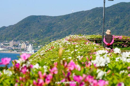 彦島南公園02.jpg