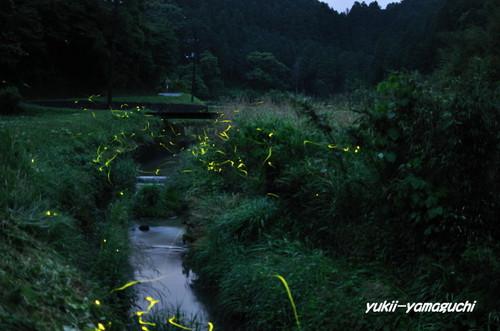 豊田町ほたるⅢ 006.JPG