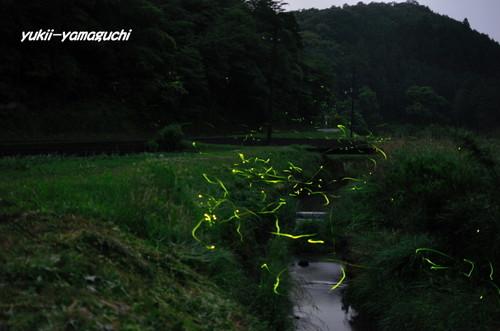 豊田町ほたるⅢ 013.jpg