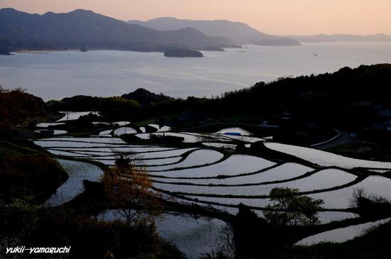 油谷棚田2010-02.jpg