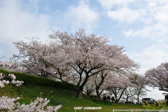 竜王山06.jpg