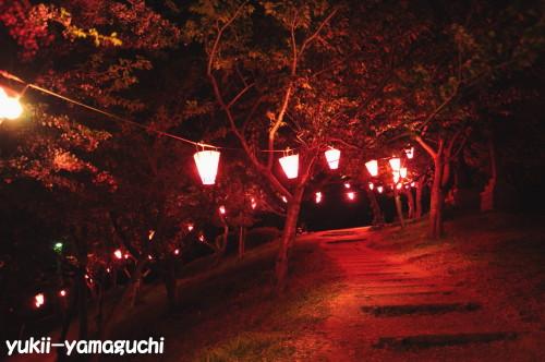 竜王山提灯06.jpg