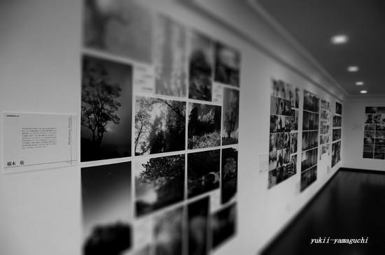 しゃびやま写真展10.jpg