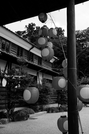 しゃびやま写真展15.jpg