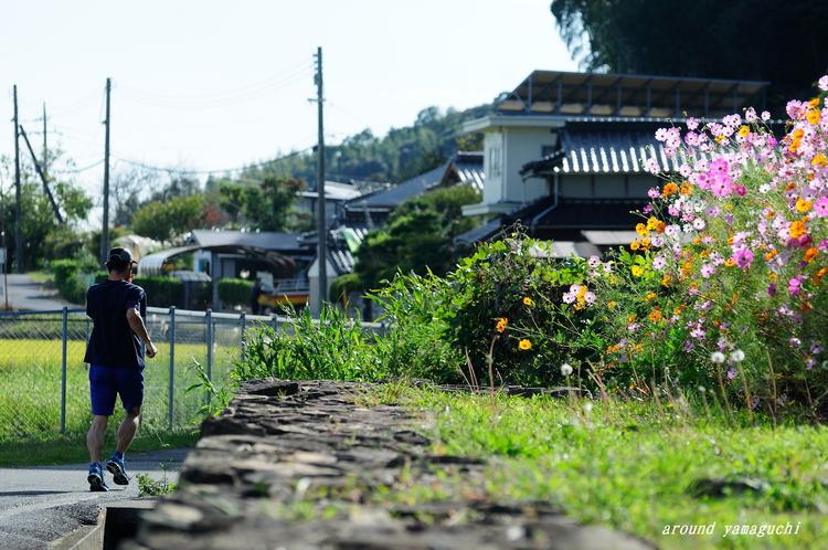 どうかん屋敷07.jpg