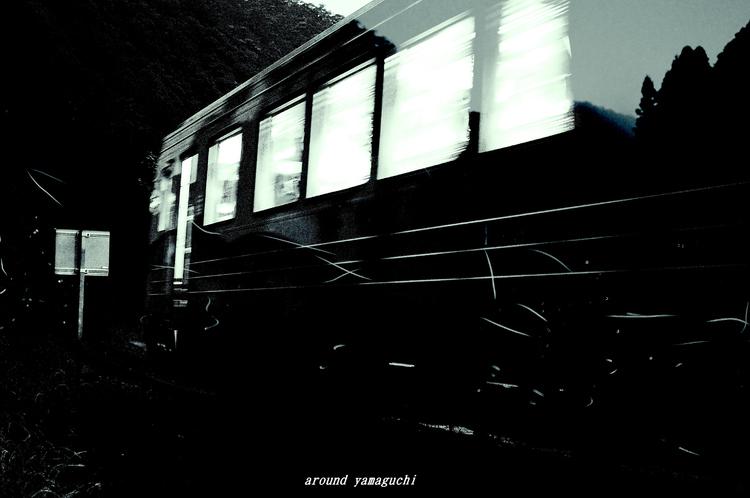 ほたる電車14.jpg