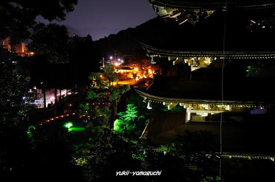 ゆらめき回廊2010-06.jpg