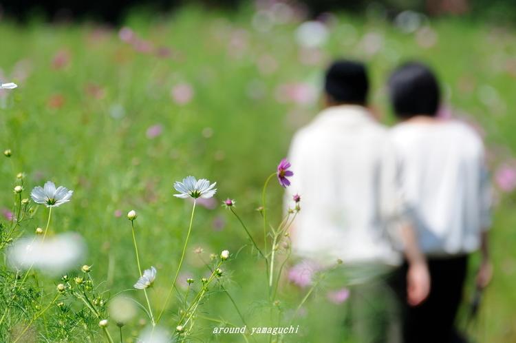 リフレッシュパーク豊浦05.jpg
