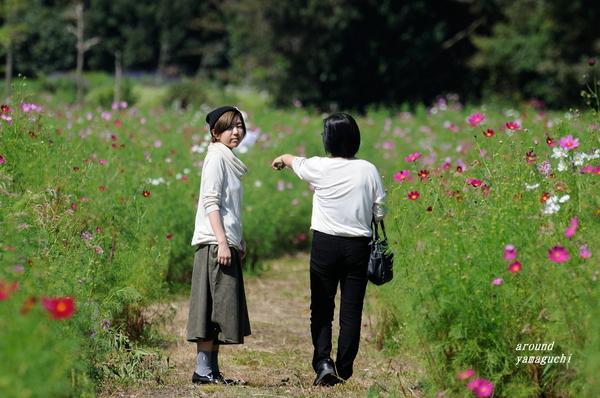 リフレッシュパーク豊浦11.jpg