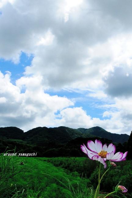 リフレッシュパーク豊浦12.jpg
