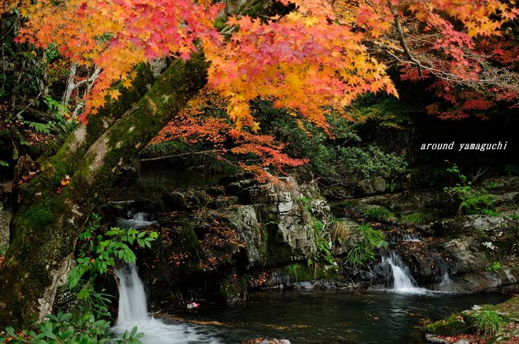 五段の滝01.jpg