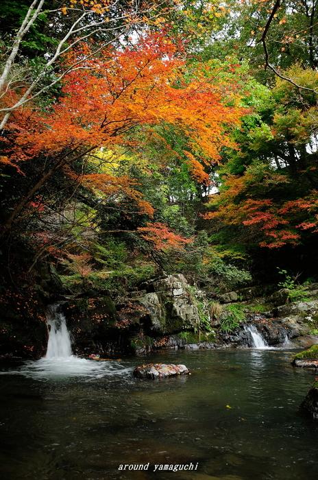 五段の滝03.jpg